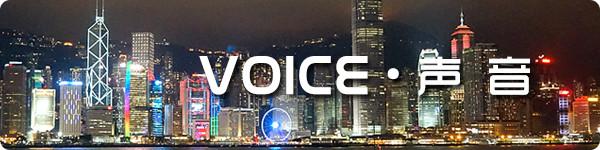 Voice · 声音